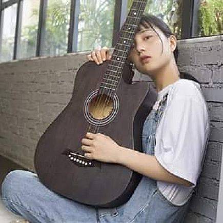 ad looking for acoustic guitar w/ pick up