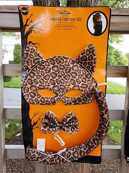 ad leopard and black cat costumes