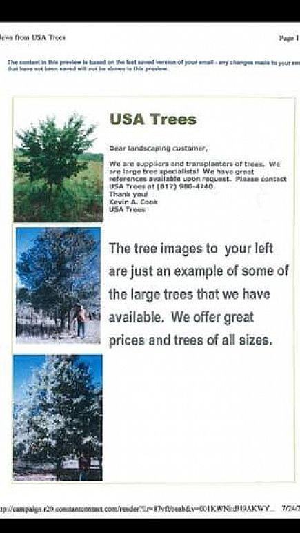 ad trees and plants wholesale!