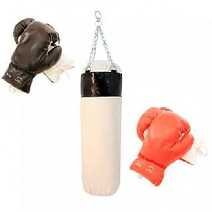 ad pro boxing set of 2 pairs gloves with punching bag