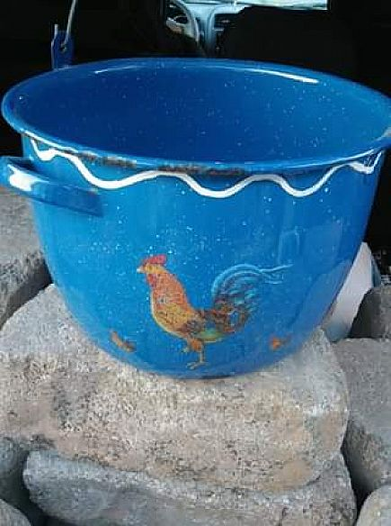 ad old fashion looking rooster pot