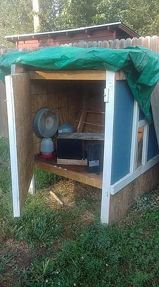 ad complete chicken coupe set up good condition!!! - just add chickens!