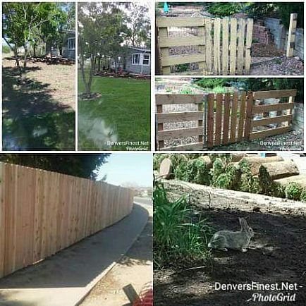 ad fence, sprinkler, sod, lanscaping and design denversfinest.net