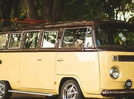 ad vw t2 from 1975
