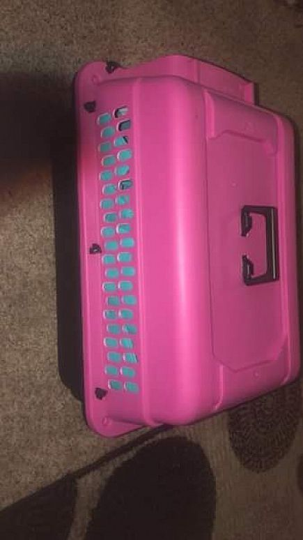 ad small pink dog crate