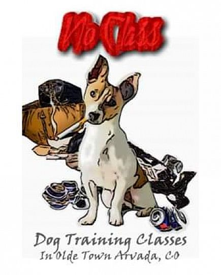 ad affordable, open door, small group dog training classes in arvada
