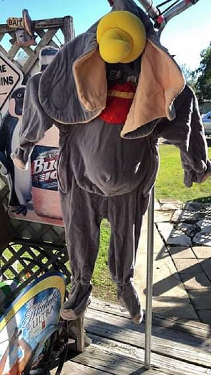 ad dumbo costume